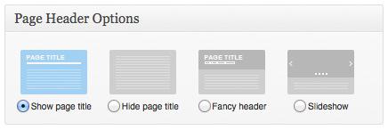 多功能企业WordPress主题:THE7汉化中文版设置步骤-页面页眉设置